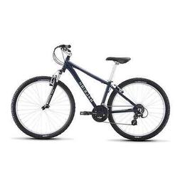 Raleigh 2019 Eva 2 Mountain Bike Blue