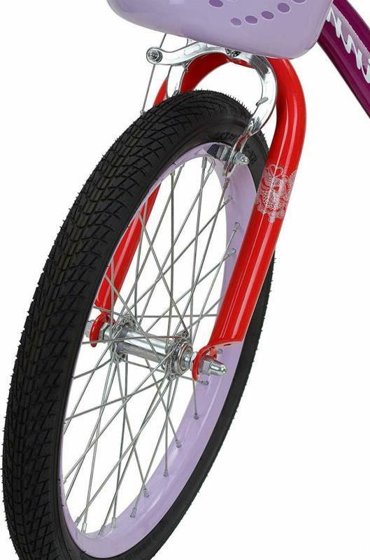 Schwinn Girl'S Bike Multiple Co