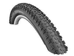 "Schwalbe 29"" x 2.1"" Racing Ralph Evo Tire, Black"