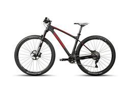Steppenwolf Tundra Carbon LTD Hardtail mountain bike 29 X 47